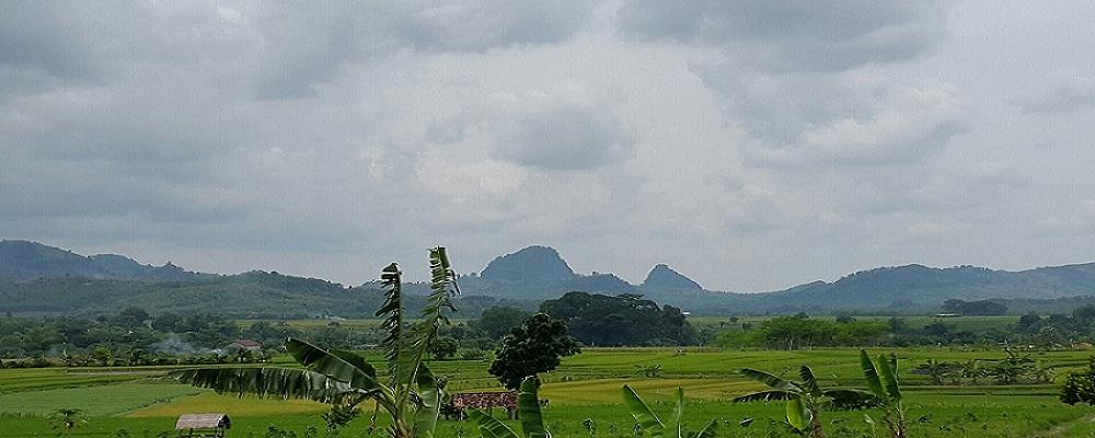 Hamparan Masa Depan Bojonegoro<BR>Jamrud Selatan Bojonegoro